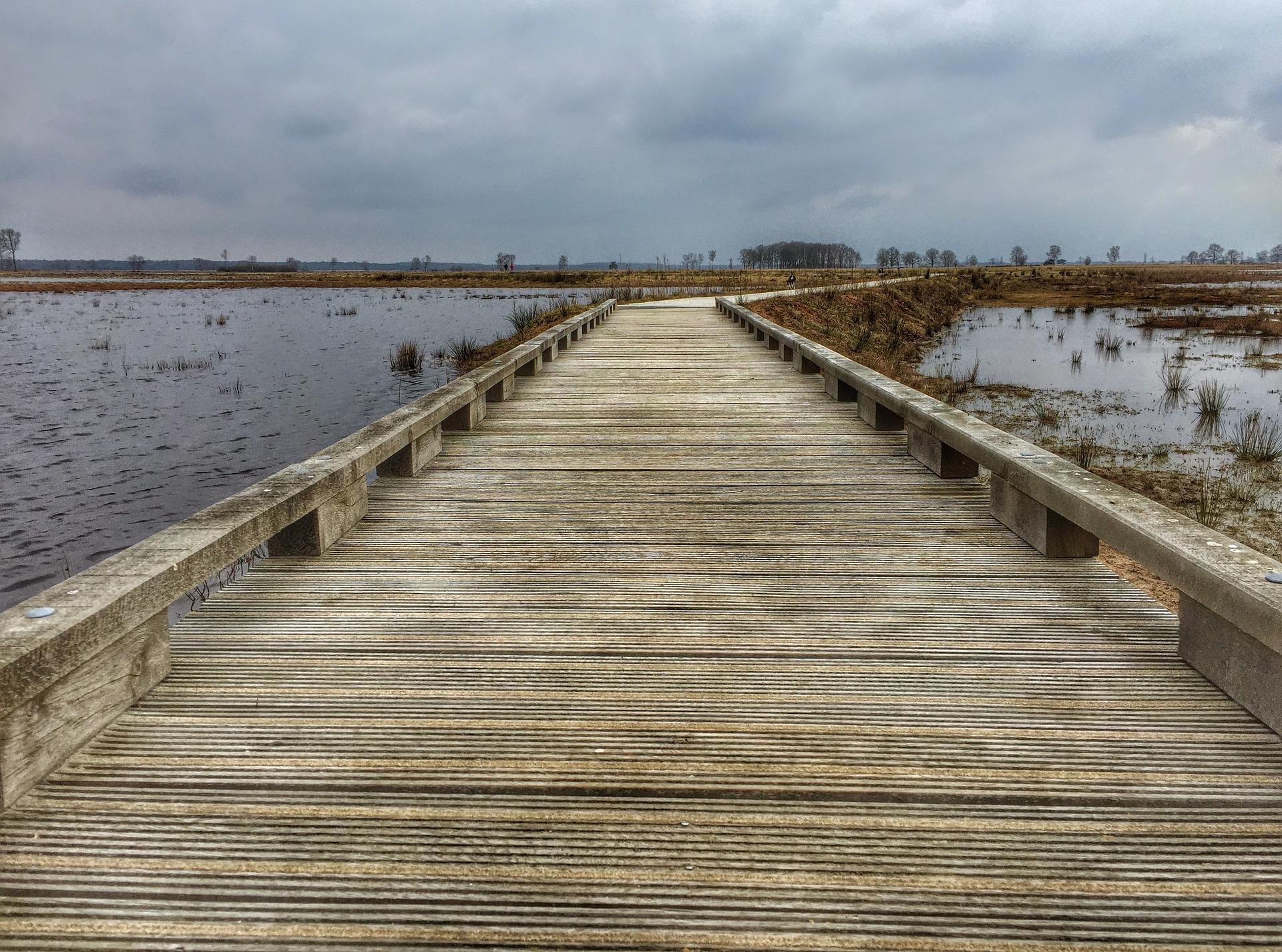 Dwingelderveld in Drenthe