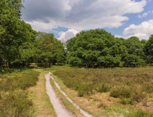 De Hondsrug UNESCO Global Geopark – Drenthe