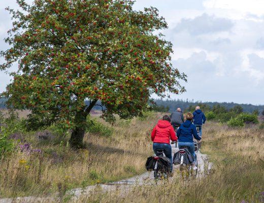 Drenthe Top 10 Activiteiten